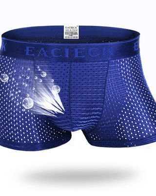 Mens Mesh Breathable Underwear Casual Ice Silk Thin Solid Color Sexy Boxers
